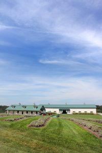 b-destiny-hill-farm