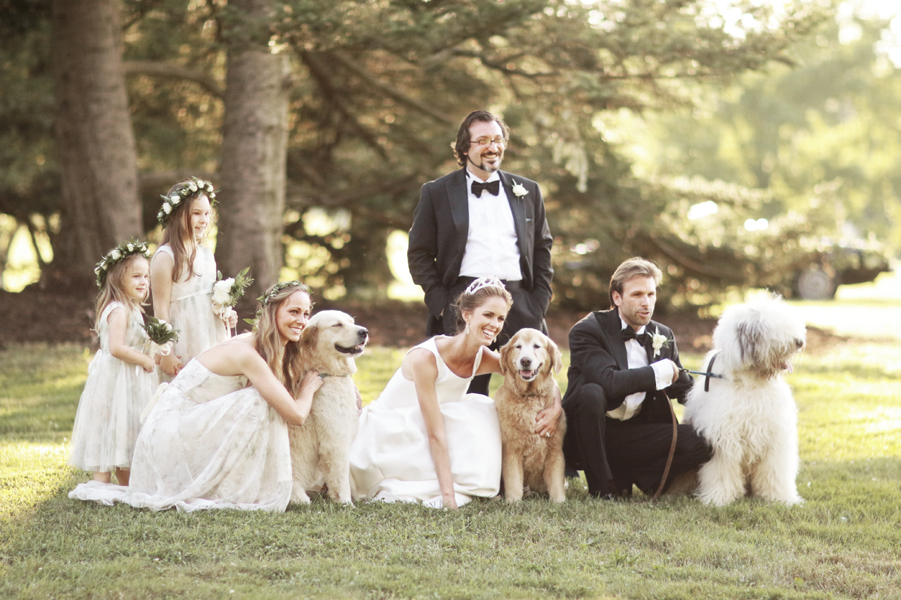 bridal party with dogs