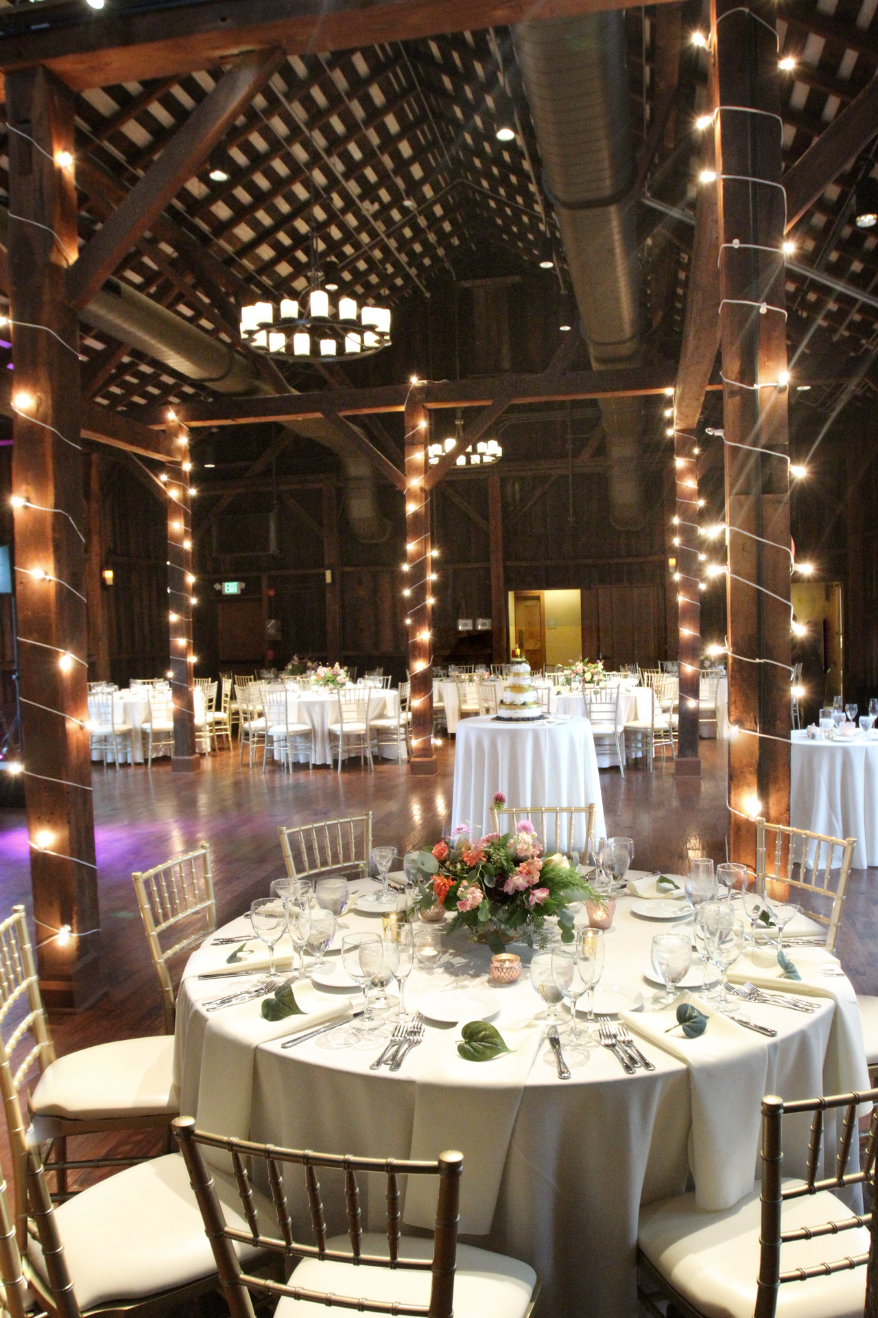 Pittsburgh Botanic Garden Wedding   Araujo Photography